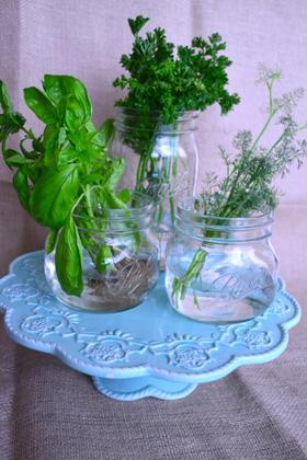 Plants on cakestand