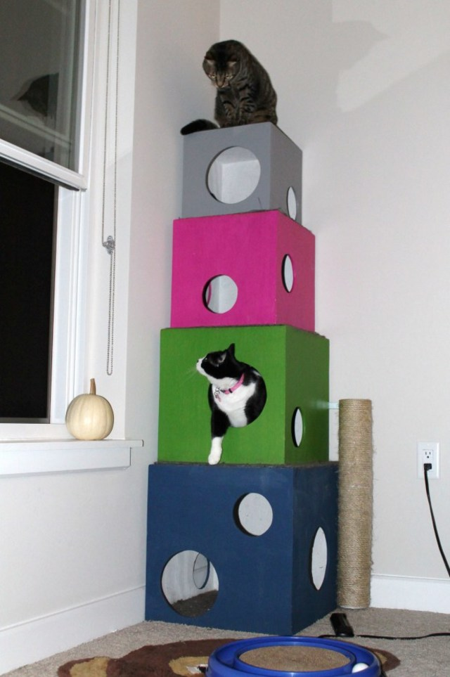 12 Diy Cat Condos That Are Hip And Modern Sheknows