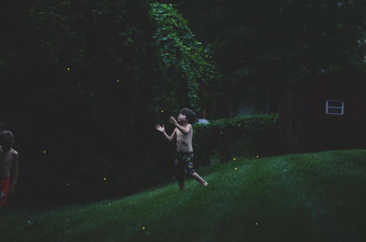 boy catching fireflies