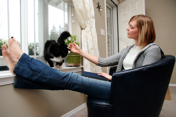 woman petting cat on windowsill