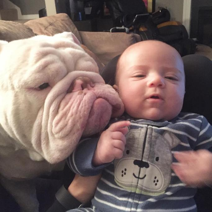 Dog and baby selfie