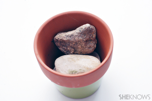 Chia pet craft - Add rocks