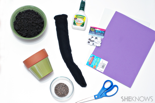 Chia pet supplies
