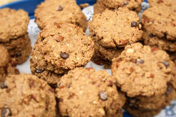 Chocolate chip raisin cookie