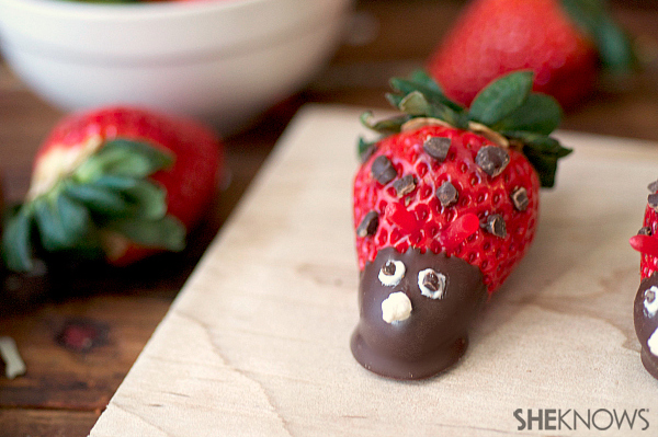 Chocolate strawberry bugs | Sheknows.com