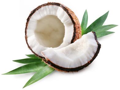 Coconut Oil | Sheknows.ca