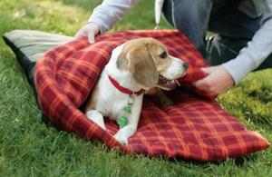 Coleman Hibernation dog sleeping bag