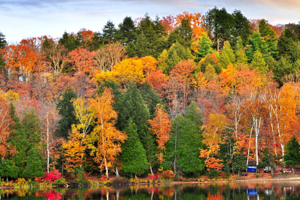 Colorful fall trees reflecting in lake