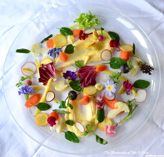 composed herb and flower salad