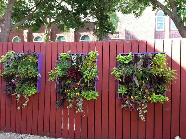 Container garden on fence