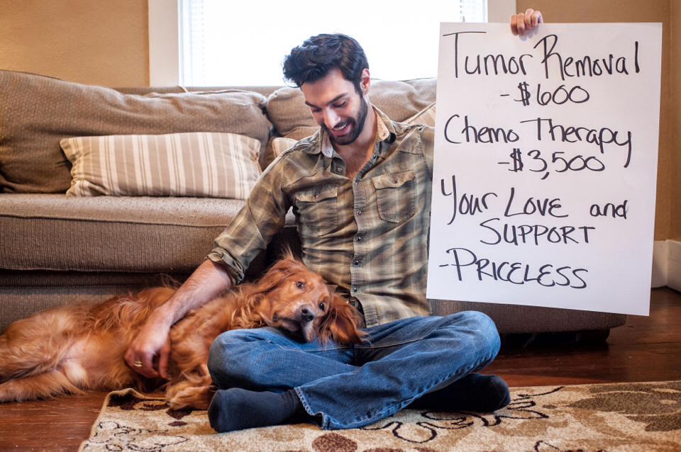 Pet Cancer Priceless
