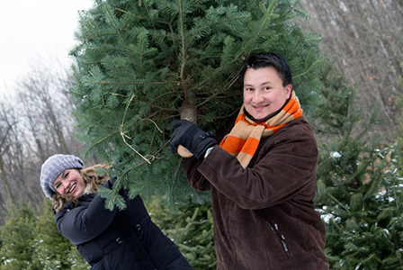 couple cutting down christmas tree