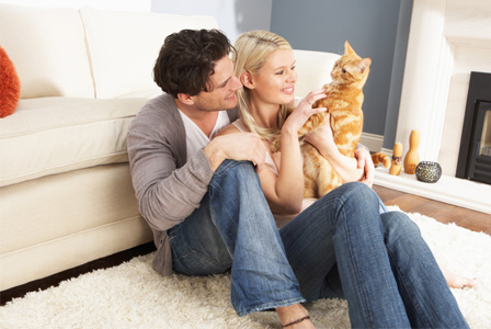 Couple playing wiht cat
