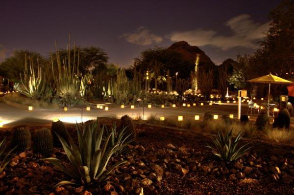 Las Noches De Las Luminarias At Phoenix Desert Botanical Garden