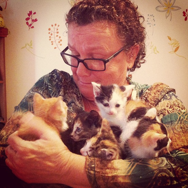 lady with kittens