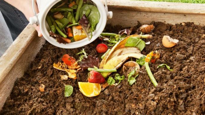 Can you compost eggshells?