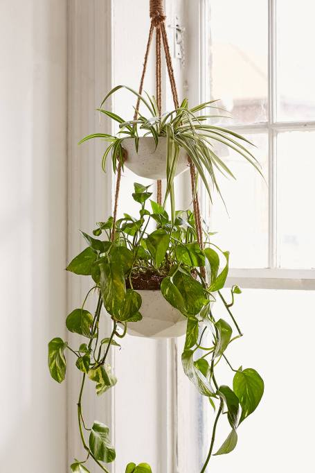 Modern Southwestern Decor: Add this hanging planter to your home