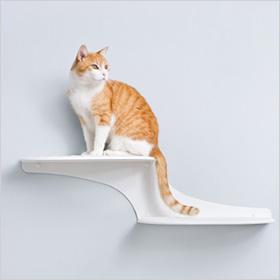 Cat Clouds Cat Shelf