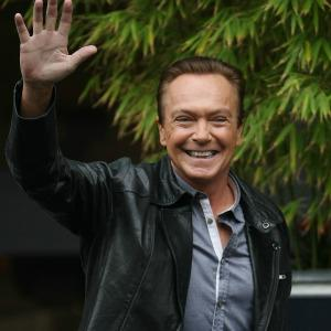 David Cassidy ordered into rehab after