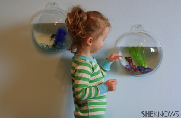 How a pet fish can be