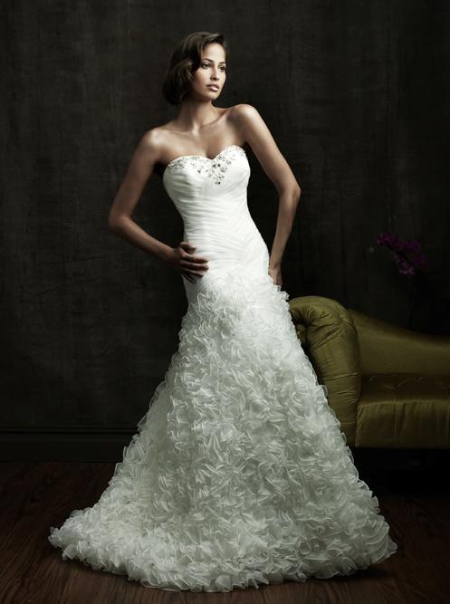 Wedding Dress Photos & Designs