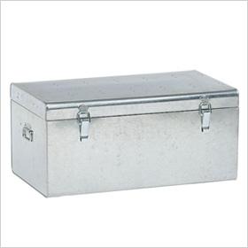 galvanized trunk