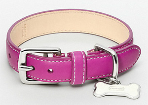 Coach Leather Collar with Dog Bone Charm