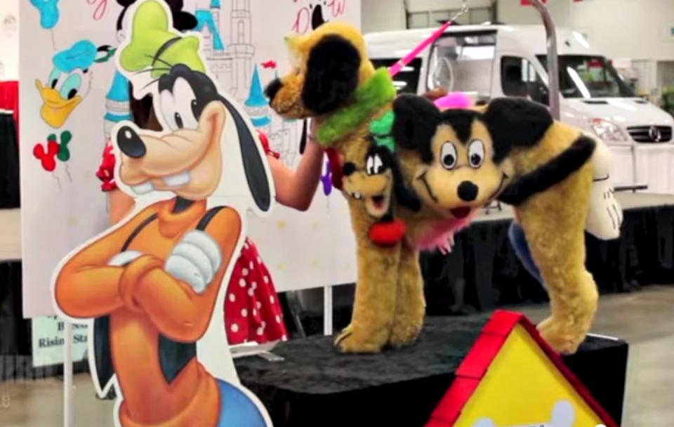 Disney Dog