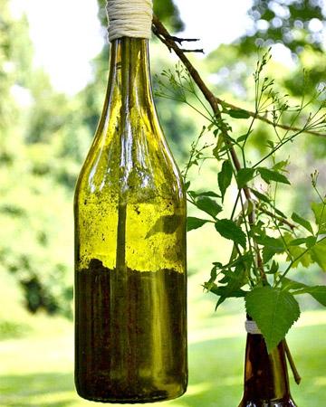 DIY beer and wine bottle planter