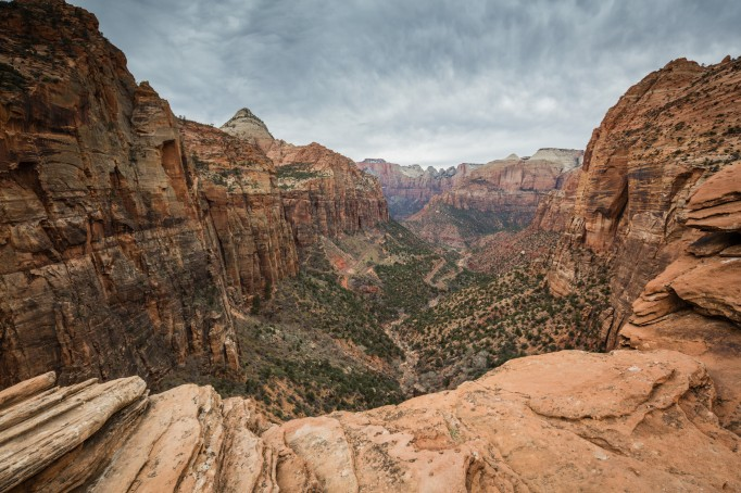 High-up view of Zion National Park