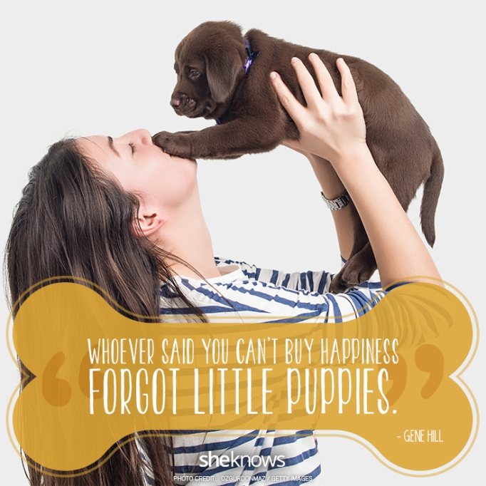 """""""Whoever said you can't buy happiness forgot little puppies."""" —Gene Hill"""