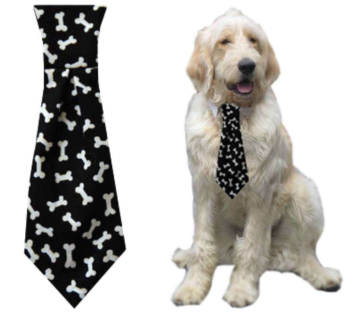 dog wearing bone-print necktie