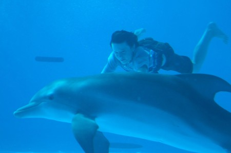 Dolphin Tale arrives in theaters in September 2011