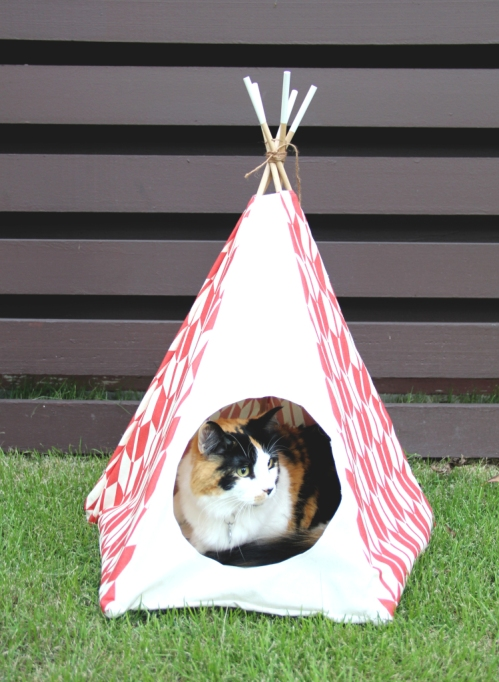12 Easy DIY projects for cat lovers