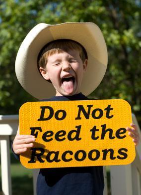 Teaching kids respect for wildlife