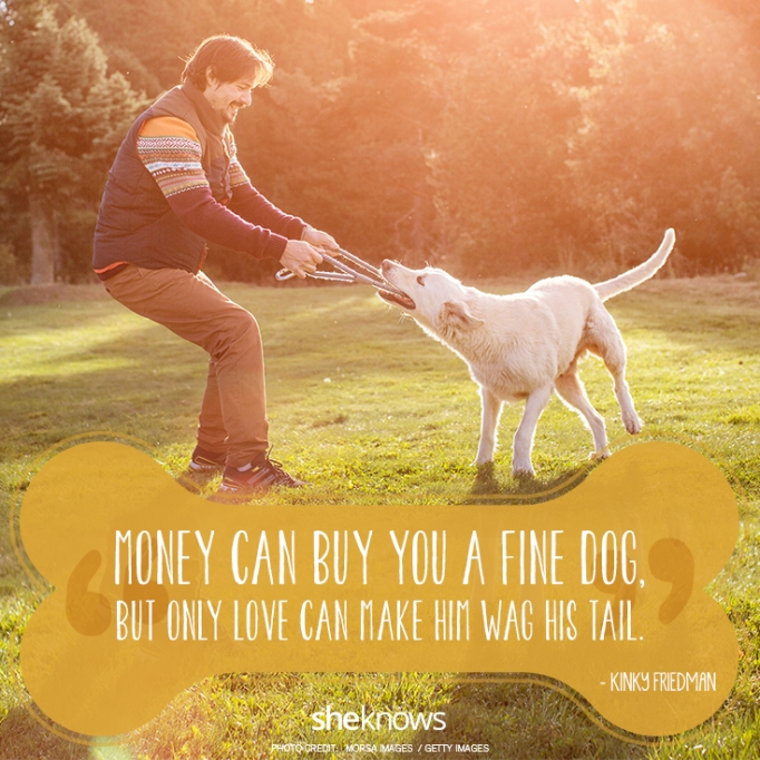 """""""Money can buy you a fine dog, but only love can make him wag his tail."""" —Kinky Friedman"""
