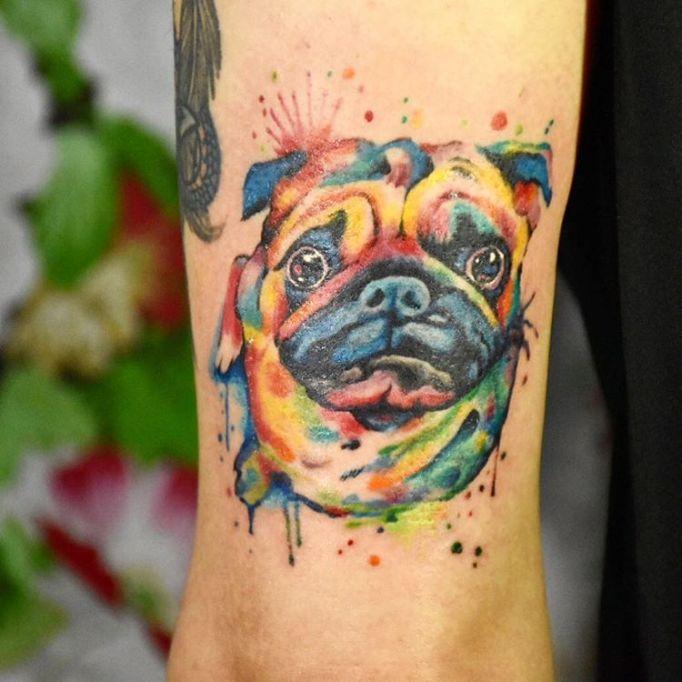 Colorful Pug