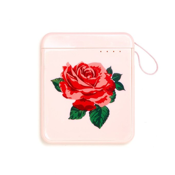 Best Phone Chargers: Back Me Up Mobile Charger In Will You Accept This Rose