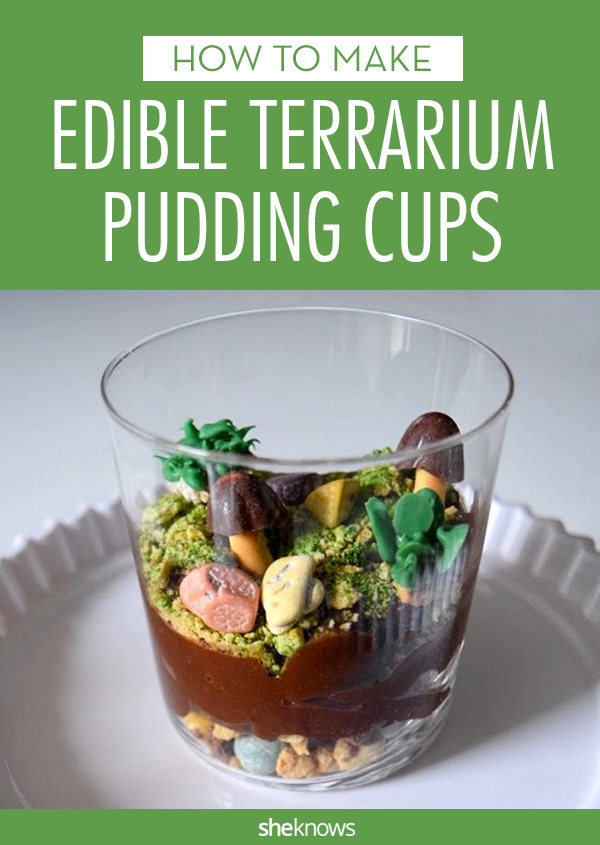 edible terrarium cups