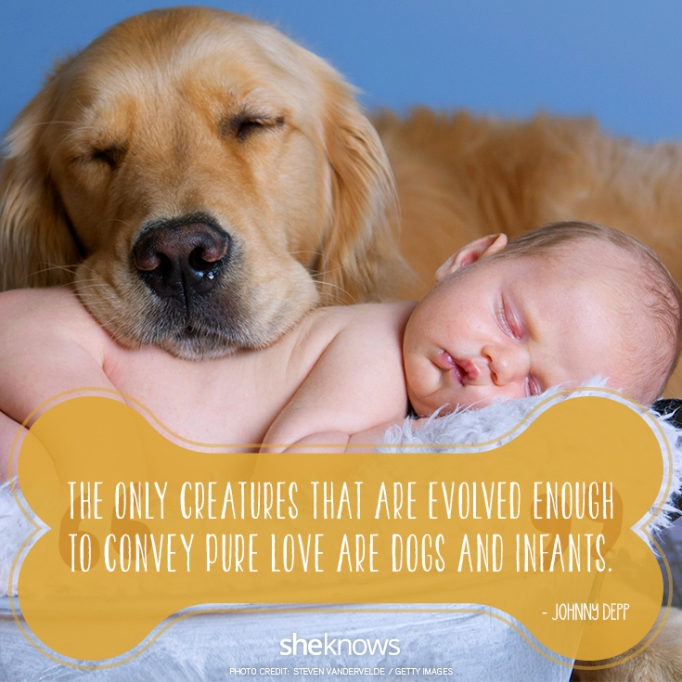 """""""The only creatures that are evolved enough to convey pure love are dogs and infants."""" —Johnny Depp"""