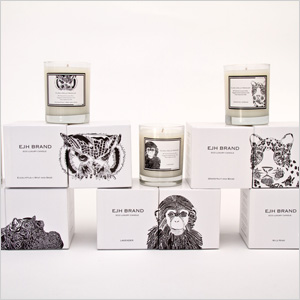 Ejh brand candles