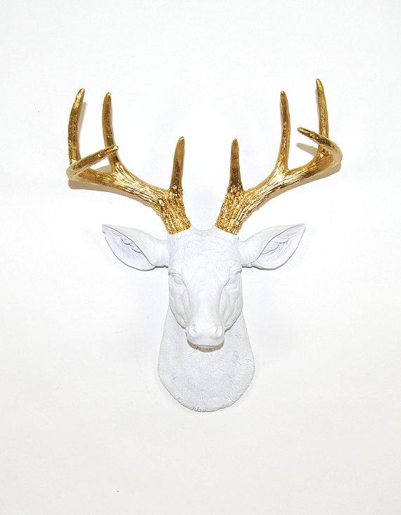 elkhead