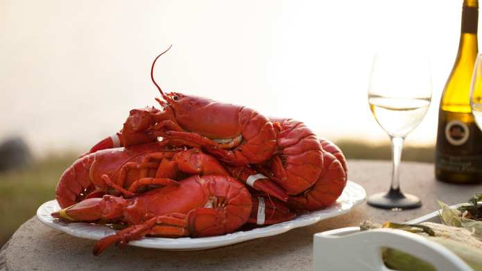 Here's How to Cook Lobsters in