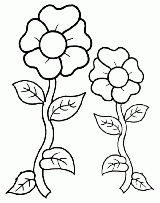 Two flowers coloring page