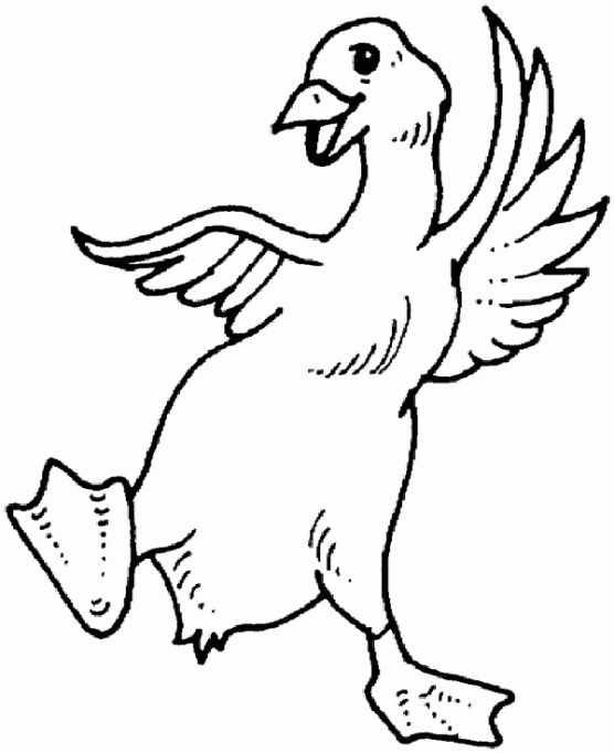 Silly goose coloring page
