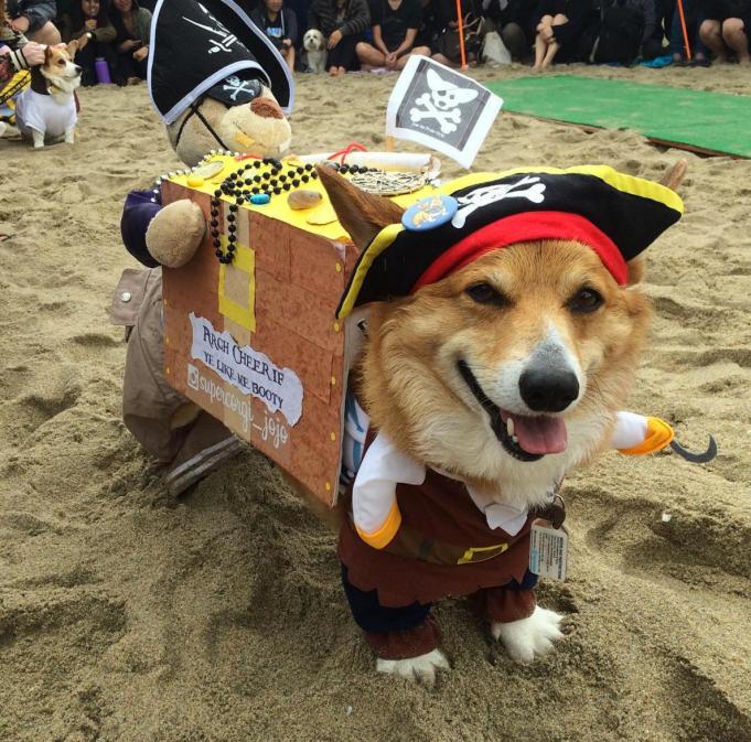 Full pirate