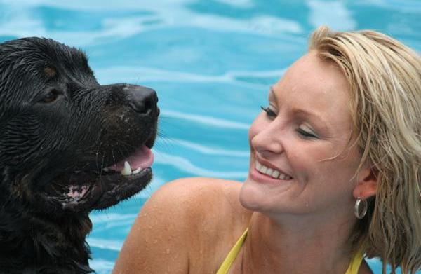 6 Summer activities for your dog