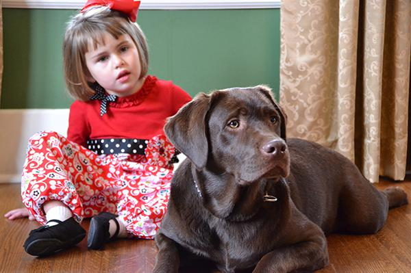 Touching stories of service dogs for