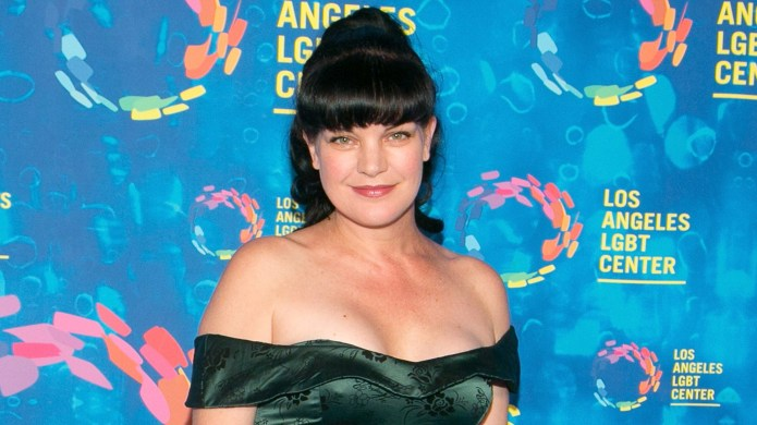 The Feud Between Pauley Perrette &