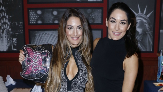 Bella Twins' spin-off show is going
